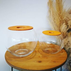 Fishbowl with Lid - no plant